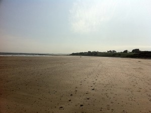 alnmouth to craster walk