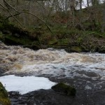 River in full flow