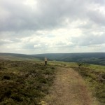 heading along the moor