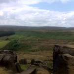the top of the wainstones