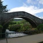 Duck Bridge