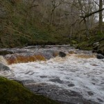The river flowing fast