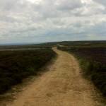Track past