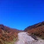 More blue sky